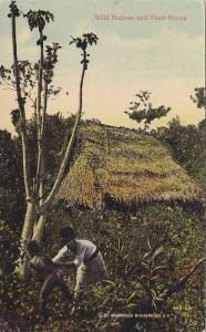 Wild Natives and Their Home, Interior Of Panama, 1900-1910s