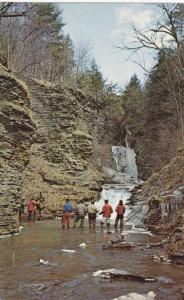 Rainbow Trout Fishing - Deckertown Falls, Montour NY, New York
