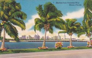 Florida Miami Skyline From Venetian Way