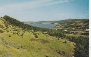 Panoramic view of Collier's Harbour, Conception Bay Peninsula of Newfoundland...