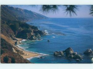 Pre-1980 PARK SCENE Big Sur - Near Carmel California CA hk6832