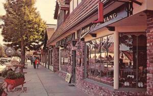 Solvang California~Copenhagen Drive~Gift Shop~Jenson~Plants in Wheelbarrow~1960s