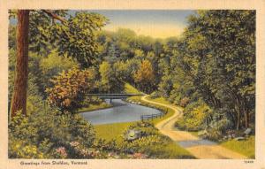 Sheldon Vermont Scenic Roadway Greeting Antique Postcard K90452