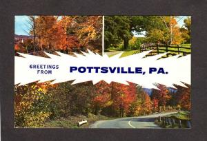 PA Greetings From Pottsville Penn Pennsylvania Postcard Carte Postale Trees