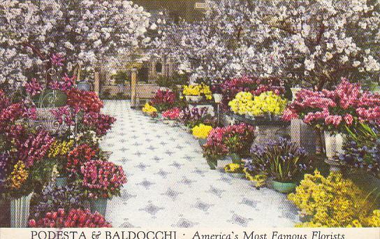 Podesta and Baldocchi Florists San Francisco California America's Most Famous...