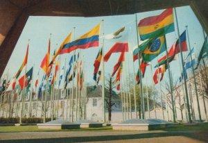 Palais L'Unesco Paris Flags French 1960s Postcard