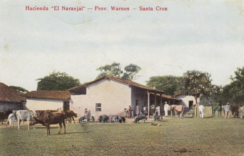 PROV. WARNES, Santa Cruz, Bolivia, 1900-10s; Hacienda El Naranjal