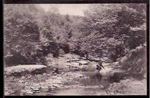 PA Carbondale Fall Brook 1907