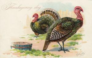 THANKSGIVING Day; 1900-10s; Wild Turkeys, TUCK # 23; AS; RJ Wealthy