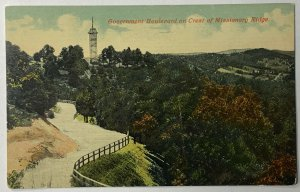 Old UDB Postcard Government Boulevard on Crest Missionary Ridge Chattanooga TN