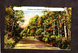 PA Greetings From Marcus Hook Pennsylvania Postcard Penn Road