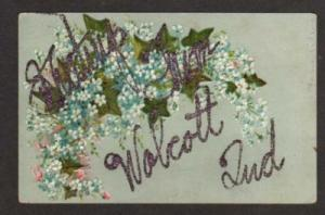 IN Greetings from WOLCOTT INDIANA Postcard PC Flowers