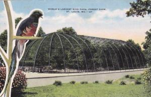 World's Largest Bird Cage, Forest Park, St Louis, Missouri, 30-40s