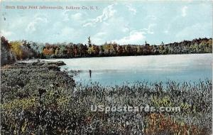 Birch Ridge Pond Jeffersonville NY 1909