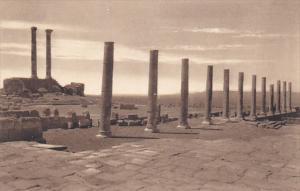 Tunisia Ruines Romaines de Timgad Colonnade des propylles du Capitole