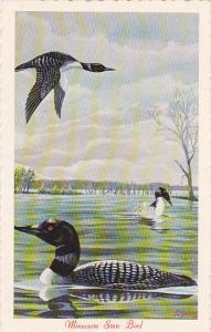 Common Loon Minnesota State Bird