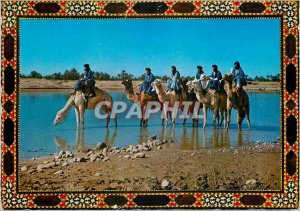 Modern Postcard the Camel caravan