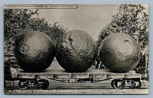 EXAGGERATED CALIFORNIA ORANGES ANTIQUE REAL PHOTO POSTCARD RPPC collage montage