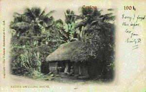 Ceylon Native Dwelling House Postcard