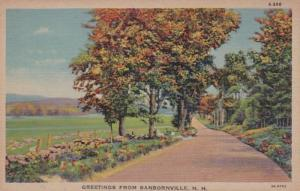 New Hampshire Greetings From Sanbornville Curteich