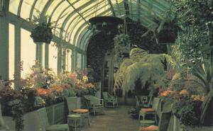 Conservatory, Empress Hotel, VICTORIA, British Columbia, Canada, 40-60's