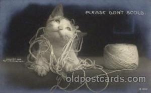 Cat Cats, Post Card, Post Card
