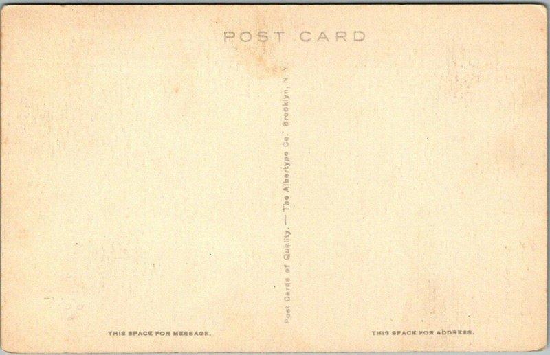 Calistoga, California Postcard CALISTOGA GEYSER Albertype c1930s Unused