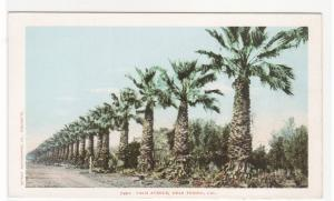 Palm Avenue Fresno California 1907c postcard