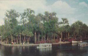 Florida Silver Springs Scene With Glass Bottom Boats