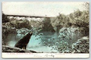 Redwood Falls Minnesota~Wolf on Bank Under The Bridge~1907 Handcolored Postcard