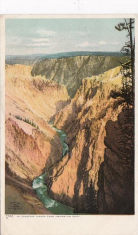 Yellowstone Canyon From Inspiration Point Yellowstone National Park