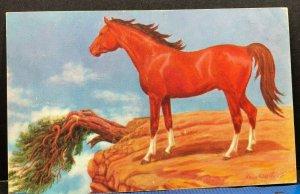 Free to Roam Painting Lewis Larsen Senator Utah 1952 Vintage Postcard