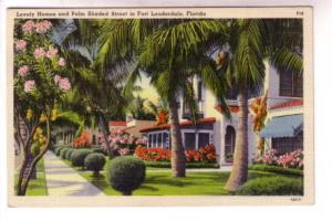 Lovely Homes and Palm Shaded Street, Fort Lauderdale, Florida,
