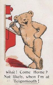 Teignmouth Devon Teddy Bear On Telephone Antique Postcard