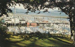 ILWACO , Washington , 50-60s ; Port Basin