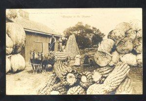 RPPC BROOKLYN IOWA CORN FARMING FARM EXAGGERATION REAL PHOTO POSTCARD 1909