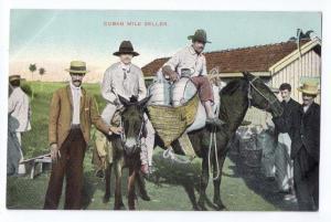 Cuba Cuban Milk Seller ca 1910