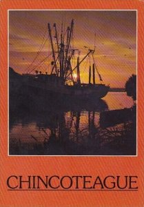 Chincoteaggue Sunset Chincoteague Island Virginia