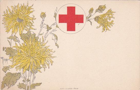 Italian Red Cross , Croce Rossa Italiana , Commissione Di Propaganda - Circos...