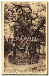 Old Postcard Allouville Bellefosse Le Gros Chene Tree