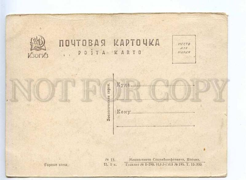 232535 USSR RUSSIA mountain goats Vintage GIZ postcard