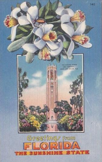 Florida Lake Wales The Singing Tower Greetings From Florida The Sunshine State