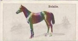 Wills Vintage Cigarette Card New Zealand Race Horses 1928 No 7 Eulalie