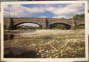 Scotland Creebridge at Newton Stewart - posted 1993