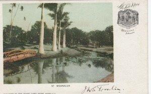MOANALU , Hawaii , PMC 1898 ; Aloha Nui