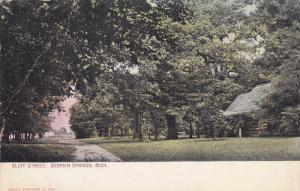 BERRIEN SPRINGS, Michigan, PU-1911; Bluff Street