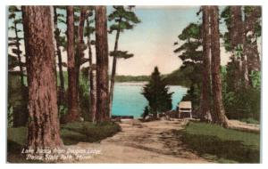 Lake Itasca from Douglas Lodge, Itasca State Park, MN Hand-Colored Postcard *4X