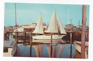 Cape May NJ Marina Sailboat Vintage 1954 Postcard Boat Reflection