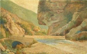 California Coast Highway Gaviota Pass 1920s Postcard Santa Barbara 3509