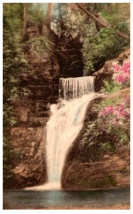 Pennyslvania  Buck's falls Lower Falls ,